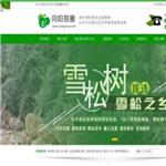 南京向阳苗圃场 http://www.songmiao.net